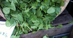 Spinach_KF