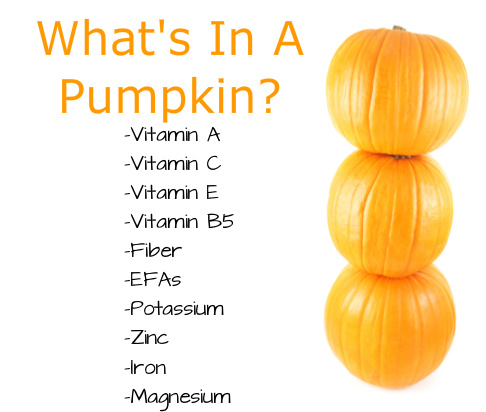pumpkins_3_test
