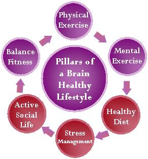 pillars of dementia prevention- ex small graph- jpg