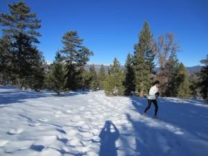 Winter-run-2-300x225