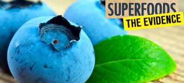 blueberries_377x171_168268399