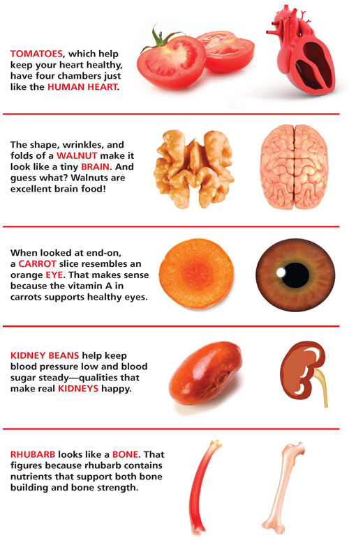 Food that look like Body Parts & What are they're Good for ...