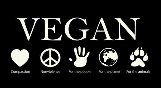 Five Big Reasons You Should Become Vegan – u-VIB Blog