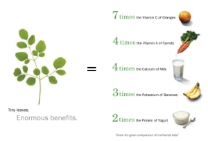moringa-presentation-general-screen-dragged