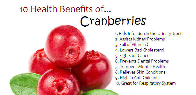 2013-12-24-the-health-benefits-of-the-humble-cranberry-infographic_1024x1024
