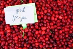 cranberries_a